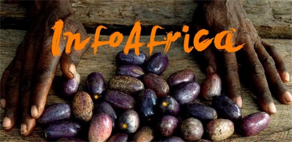 InfoAfrica 03 Cultura Africana y Viajes