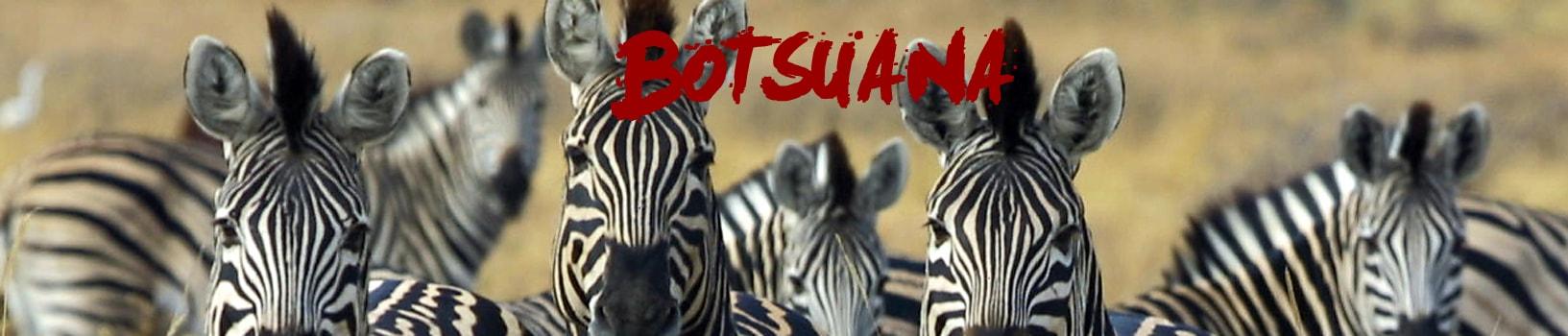 viaje-botsuana