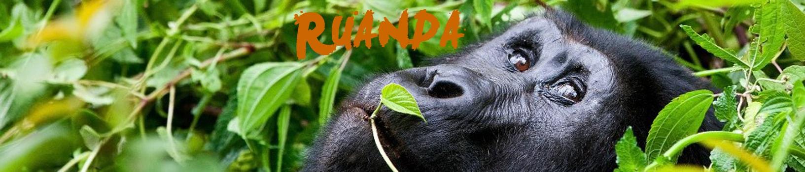 viaje-ruanda